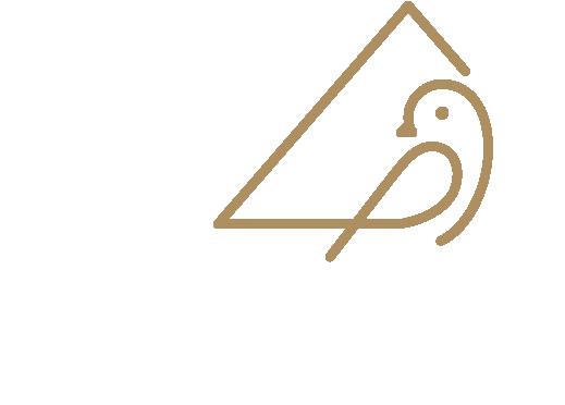 Matthew Yan地产